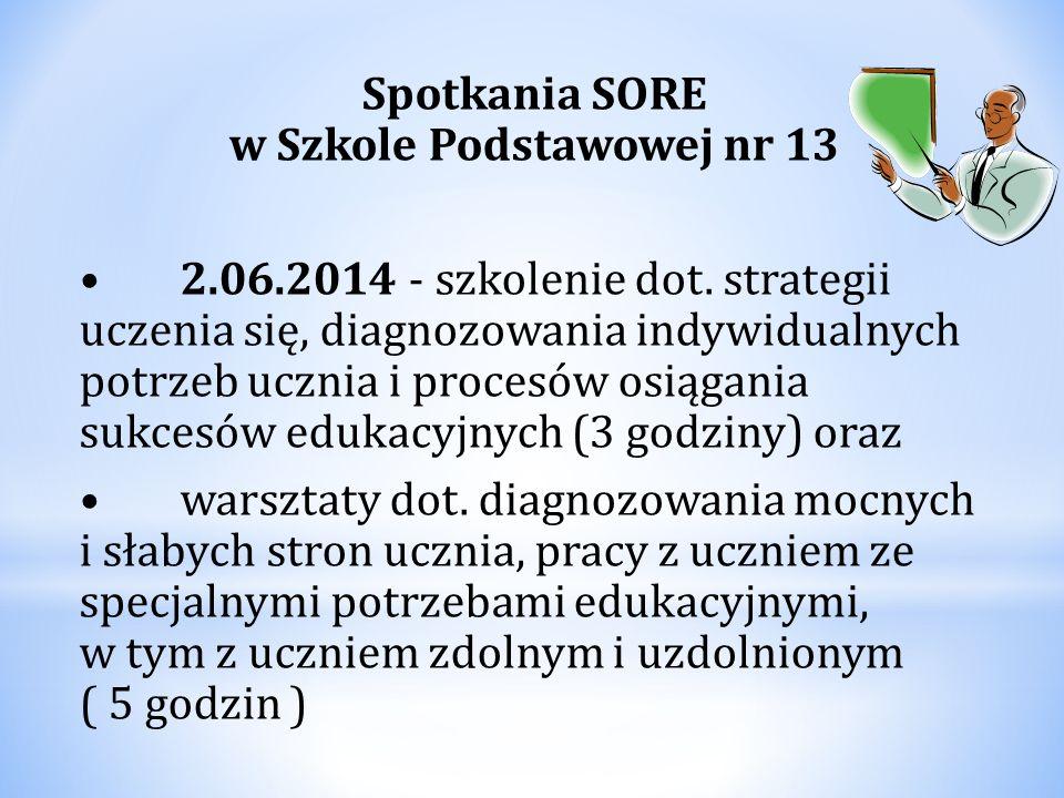 Spotkania SORE w Szkole Podstawowej nr 13 2.06.2014 - szkolenie dot. strategii uczenia się, diagnozowania indywidualnych potrzeb ucznia i procesów osi