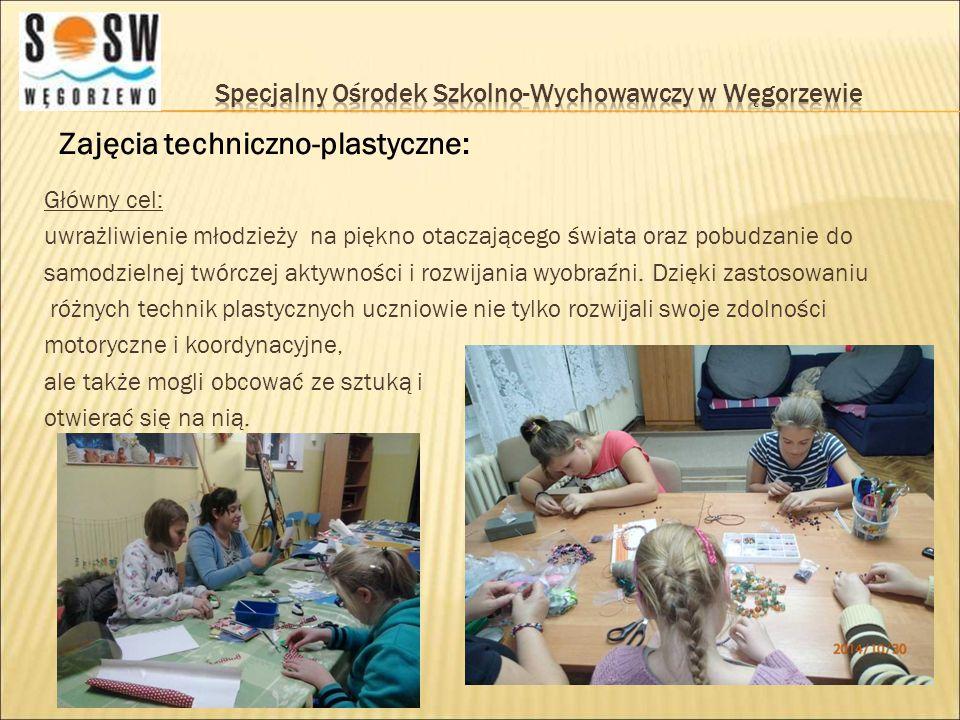 Zajęcia techniczno-plastyczne: Główny cel: uwrażliwienie młodzieży na piękno otaczającego świata oraz pobudzanie do samodzielnej twórczej aktywności i