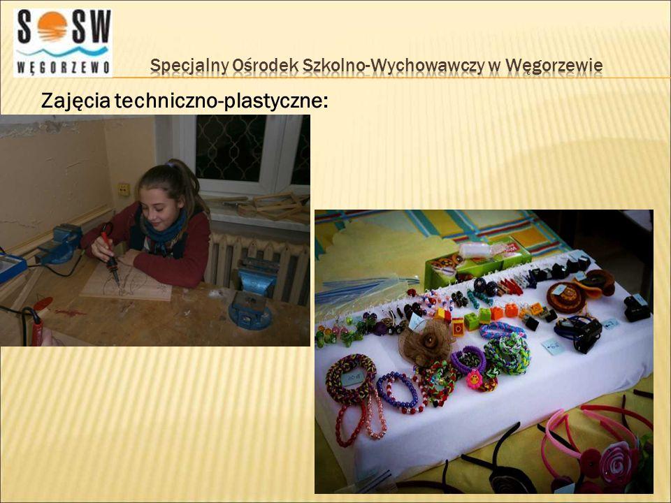 Zajęcia techniczno-plastyczne:
