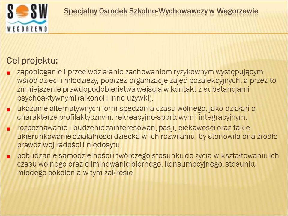 Cele zostały osiągnięte poprzez: organizację biwaku integracyjno-terapeutycznego organizację wycieczki do Olsztyna prowadzenie pozalekcyjnych zajęć: profilaktyczno – terapeutycznych, muzyczno- teatralnych, sportowych oraz techniczno-plastycznych