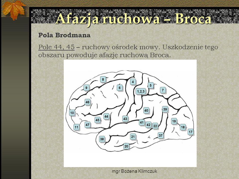 mgr Bożena Klimczuk Afazja ruchowa – Broca Pola Brodmana Pole 44, 45 – ruchowy ośrodek mowy.