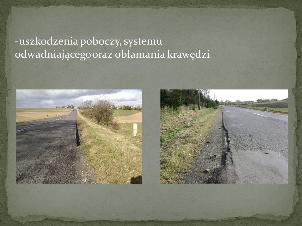 zniszczenie górnych warstw asfaltowych jest na tyle poważne, że trzeba warstwy te wymienić zwiększenie grubości konstrukcji jest konieczne ze względu na potrzebę spełnienia warunku mrozoodporności położenie drogi poza terenem zabudowanym oraz na większości odcinka brak chodnika, ograniczają koszty związane z podniesieniem niwelety konieczne jest usunięcie zniszczonej geowłókniny