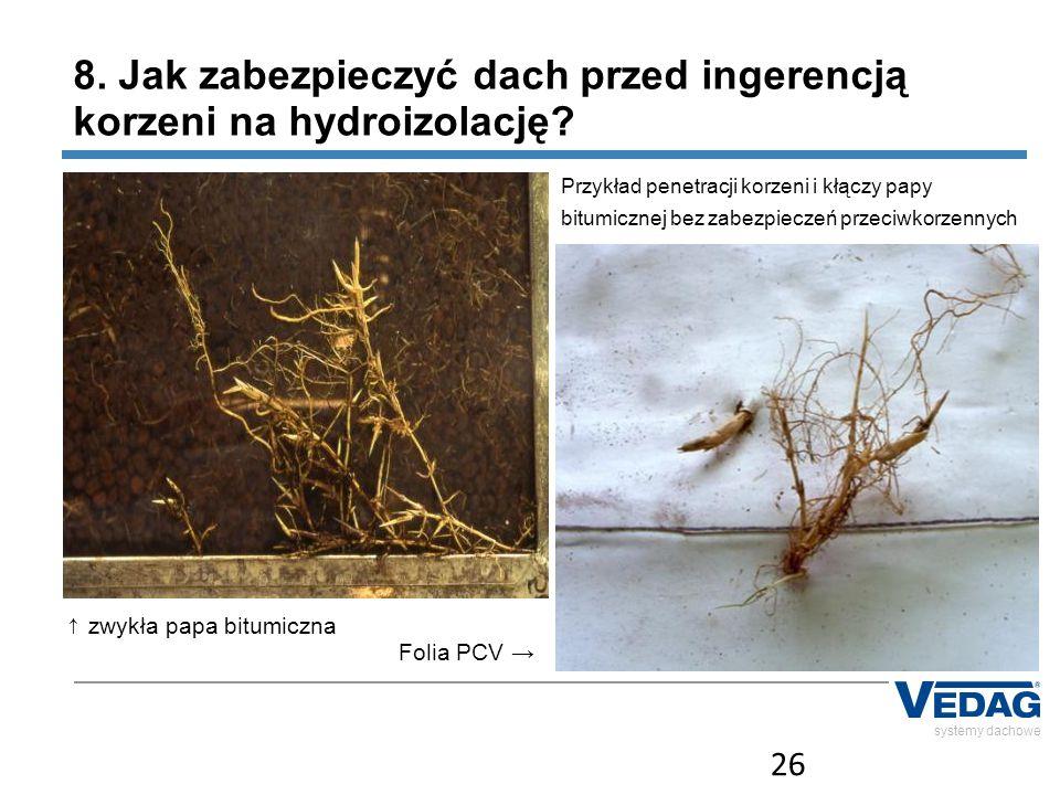 26 systemy dachowe ↑ zwykła papa bitumiczna Folia PCV → 8. Jak zabezpieczyć dach przed ingerencją korzeni na hydroizolację? Przykład penetracji korzen