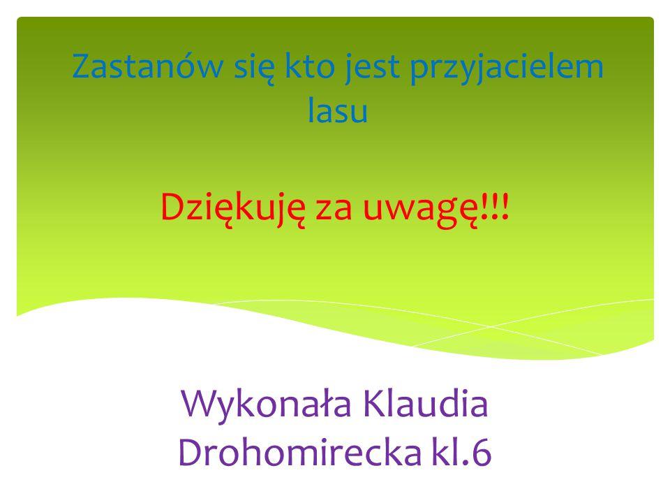 Dziękuję za uwagę!!! Wykonała Klaudia Drohomirecka kl.6 Zastanów się kto jest przyjacielem lasu