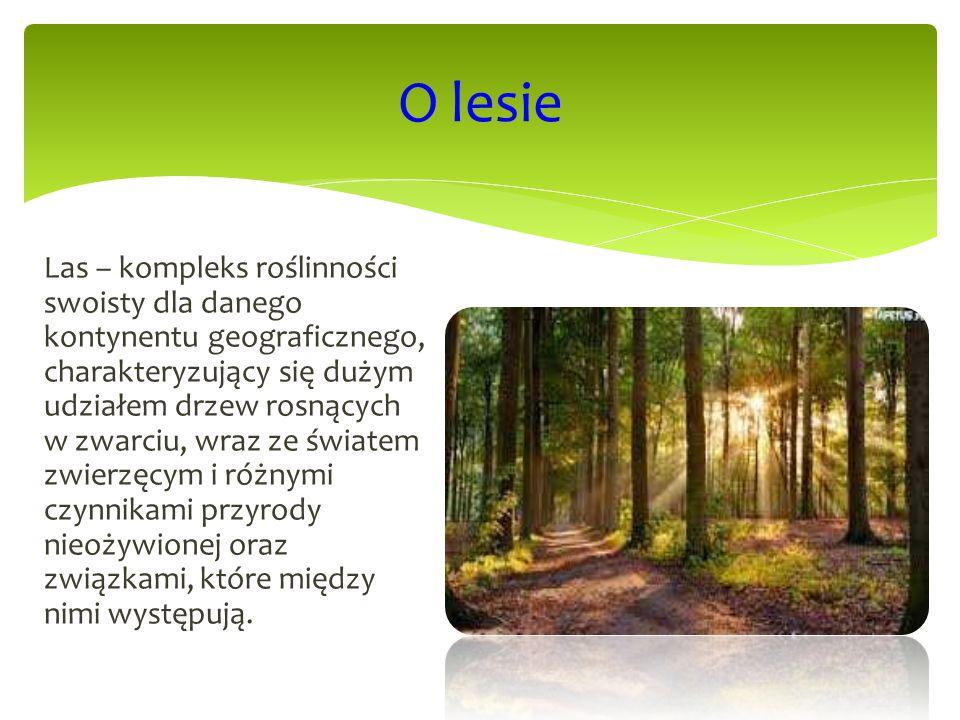 Las – kompleks roślinności swoisty dla danego kontynentu geograficznego, charakteryzujący się dużym udziałem drzew rosnących w zwarciu, wraz ze świate