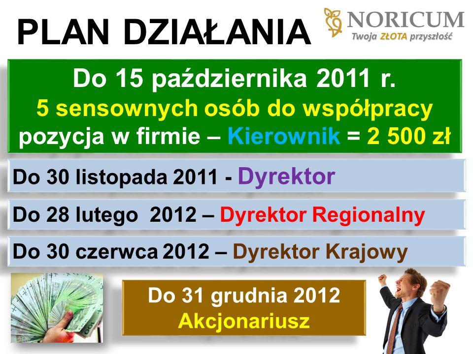 PLAN DZIAŁANIA Do 15 października 2011 r. 5 sensownych osób do współpracy pozycja w firmie – Kierownik = 2 500 zł Do 30 listopada 2011 - Dyrektor Do 2