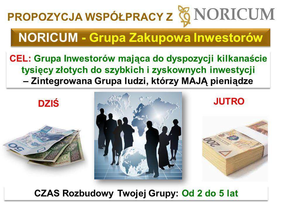 NORICUM - Grupa Zakupowa Inwestorów CEL: Grupa Inwestorów mająca do dyspozycji kilkanaście tysięcy złotych do szybkich i zyskownych inwestycji – Zinte