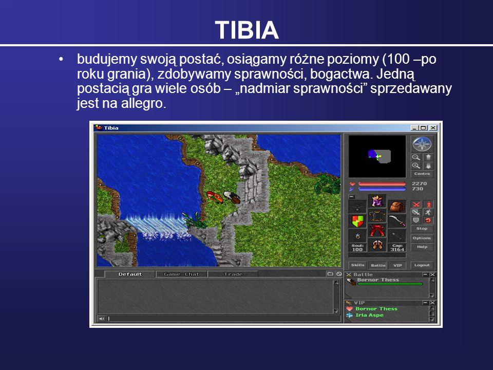 """TIBIA budujemy swoją postać, osiągamy różne poziomy (100 –po roku grania), zdobywamy sprawności, bogactwa. Jedną postacią gra wiele osób – """"nadmiar sp"""