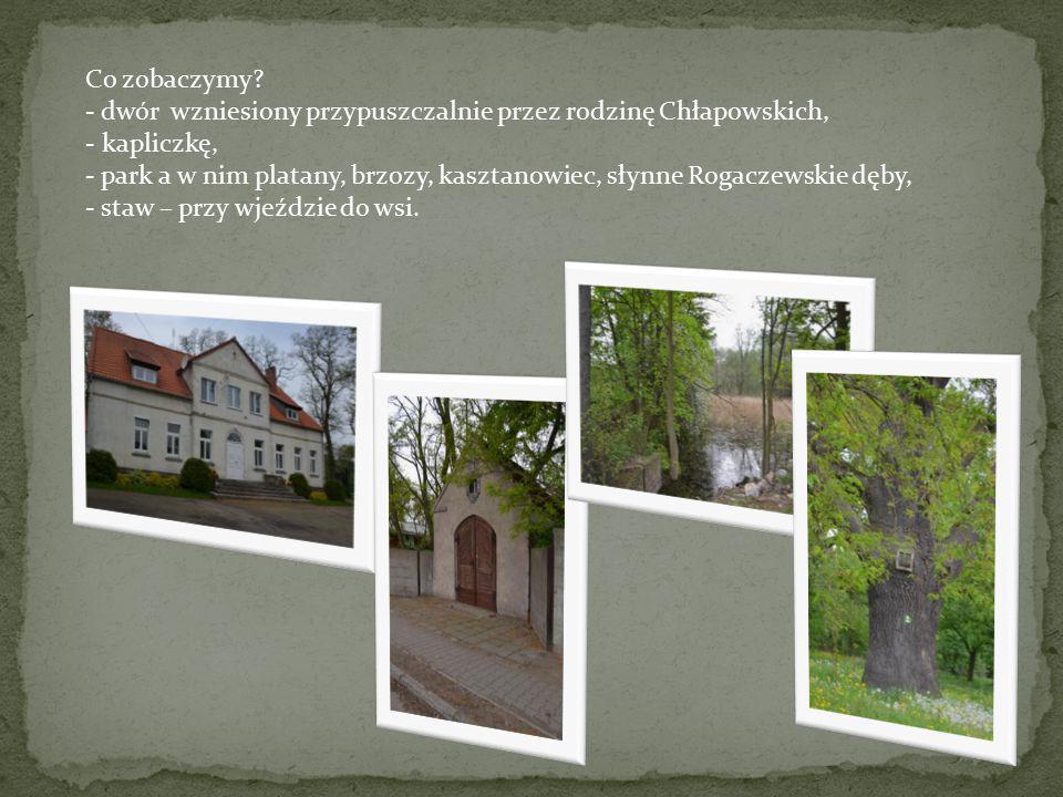 Co zobaczymy? - dwór wzniesiony przypuszczalnie przez rodzinę Chłapowskich, - kapliczkę, - park a w nim platany, brzozy, kasztanowiec, słynne Rogaczew
