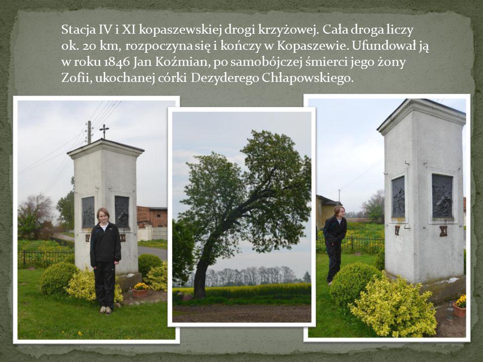 Stacja IV i XI kopaszewskiej drogi krzyżowej. Cała droga liczy ok. 20 km, rozpoczyna się i kończy w Kopaszewie. Ufundował ją w roku 1846 Jan Koźmian,