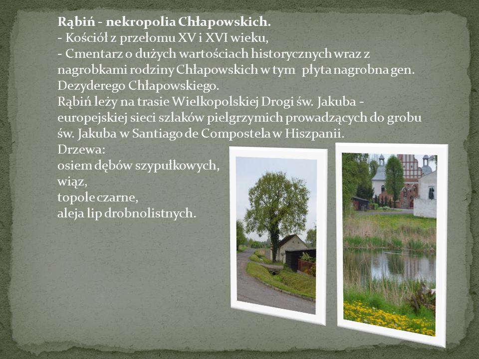 Rąbiń - nekropolia Chłapowskich. - Kościół z przełomu XV i XVI wieku, - Cmentarz o dużych wartościach historycznych wraz z nagrobkami rodziny Chłapows