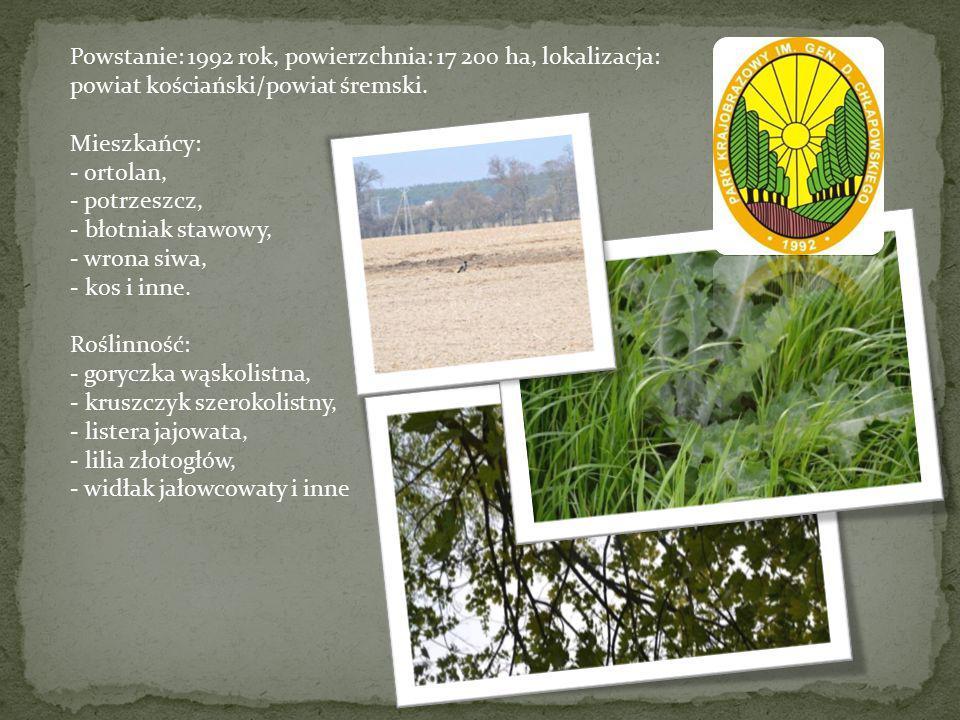 Powstanie: 1992 rok, powierzchnia: 17 200 ha, lokalizacja: powiat kościański/powiat śremski. Mieszkańcy: - ortolan, - potrzeszcz, - błotniak stawowy,