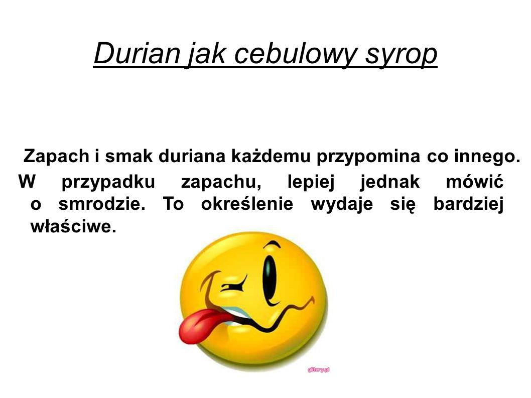 Durian jak cebulowy syrop W przypadku zapachu, lepiej jednak mówić o smrodzie.