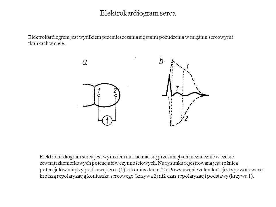 Elektrokardiogram serca Elektrokardiogram jest wynikiem przemieszczania się stanu pobudzenia w mięśniu sercowym i tkankach w ciele.