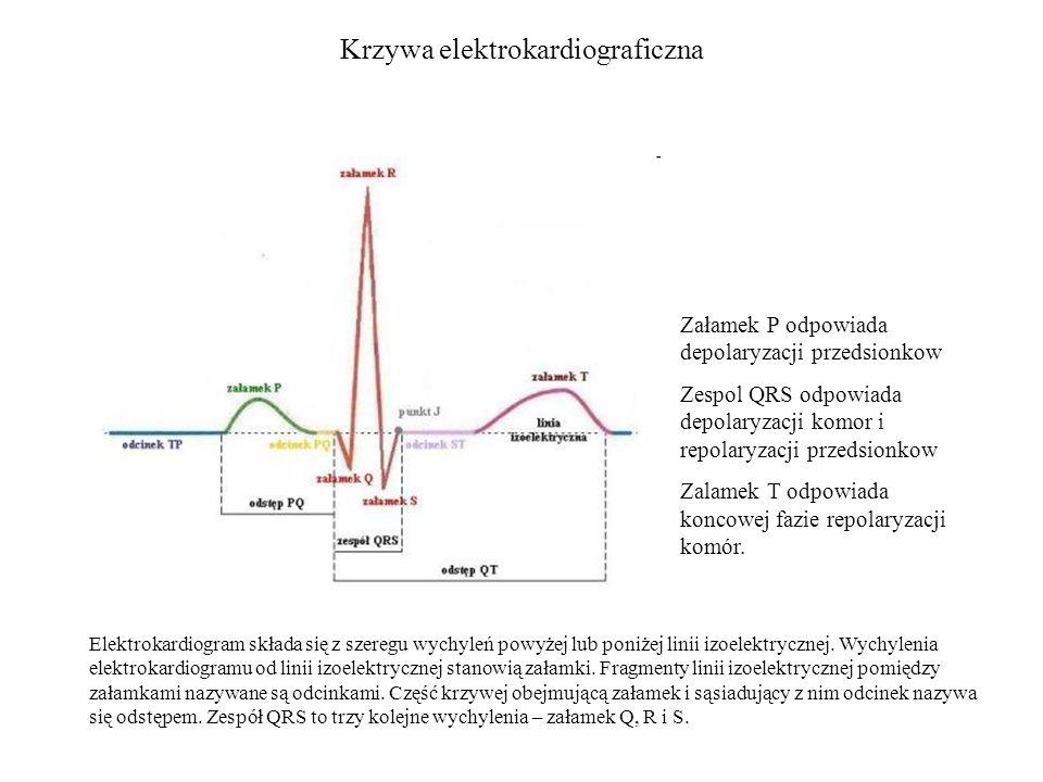 Krzywa elektrokardiograficzna Elektrokardiogram składa się z szeregu wychyleń powyżej lub poniżej linii izoelektrycznej.