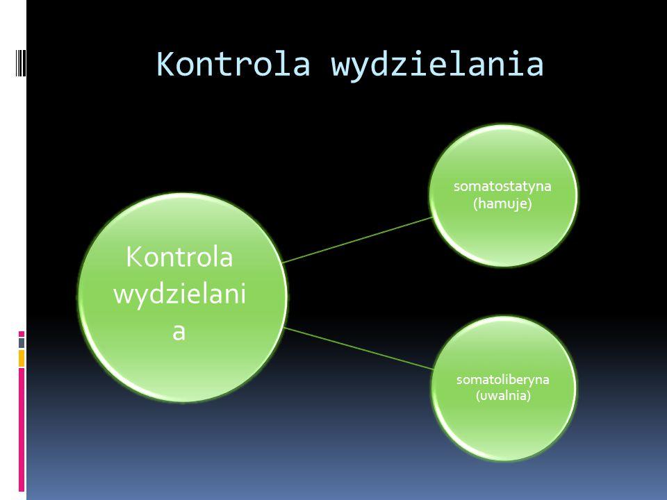 Kontrola wydzielania somatostatyna (hamuje) somatoliberyna (uwalnia) Kontrola wydzielani a