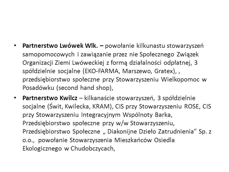 Partnerstwo Lwówek Wlk. – powołanie kilkunastu stowarzyszeń samopomocowych i zawiązanie przez nie Społecznego Związek Organizacji Ziemi Lwóweckiej z f