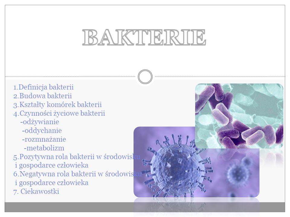 1.Definicja bakterii 2.Budowa bakterii 3.Kształty komórek bakterii 4.Czynności życiowe bakterii -odżywianie -oddychanie -rozmnażanie -metabolizm 5.Pozytywna rola bakterii w środowisku i gospodarce człowieka 6.Negatywna rola bakterii w środowisku i gospodarce człowieka 7.