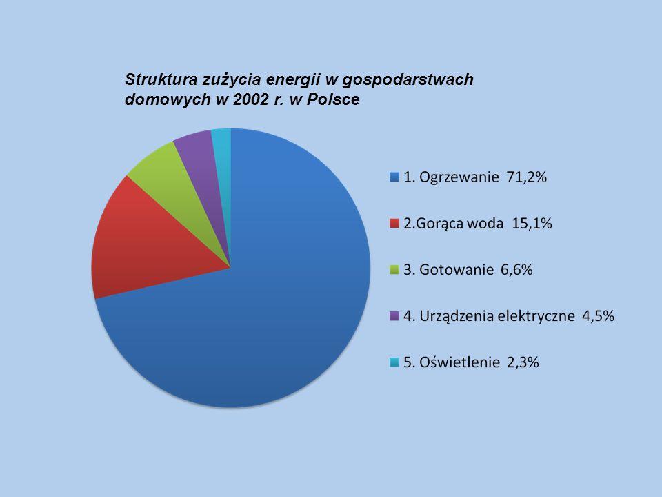 Struktura zużycia energii w gospodarstwach domowych w 2002 r. w Polsce
