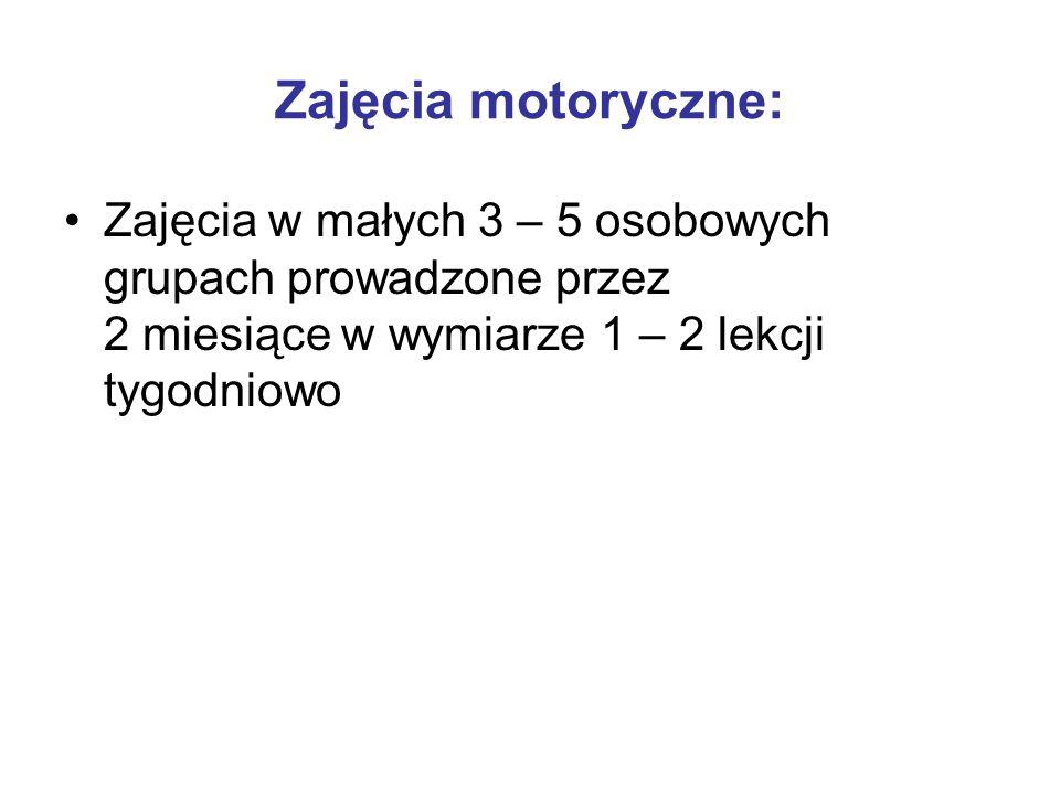 Zajęcia motoryczne: Zajęcia w małych 3 – 5 osobowych grupach prowadzone przez 2 miesiące w wymiarze 1 – 2 lekcji tygodniowo