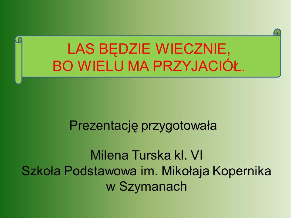Milena Turska kl. VI Szkoła Podstawowa im. Mikołaja Kopernika w Szymanach Prezentację przygotowała LAS BĘDZIE WIECZNIE, BO WIELU MA PRZYJACIÓŁ.