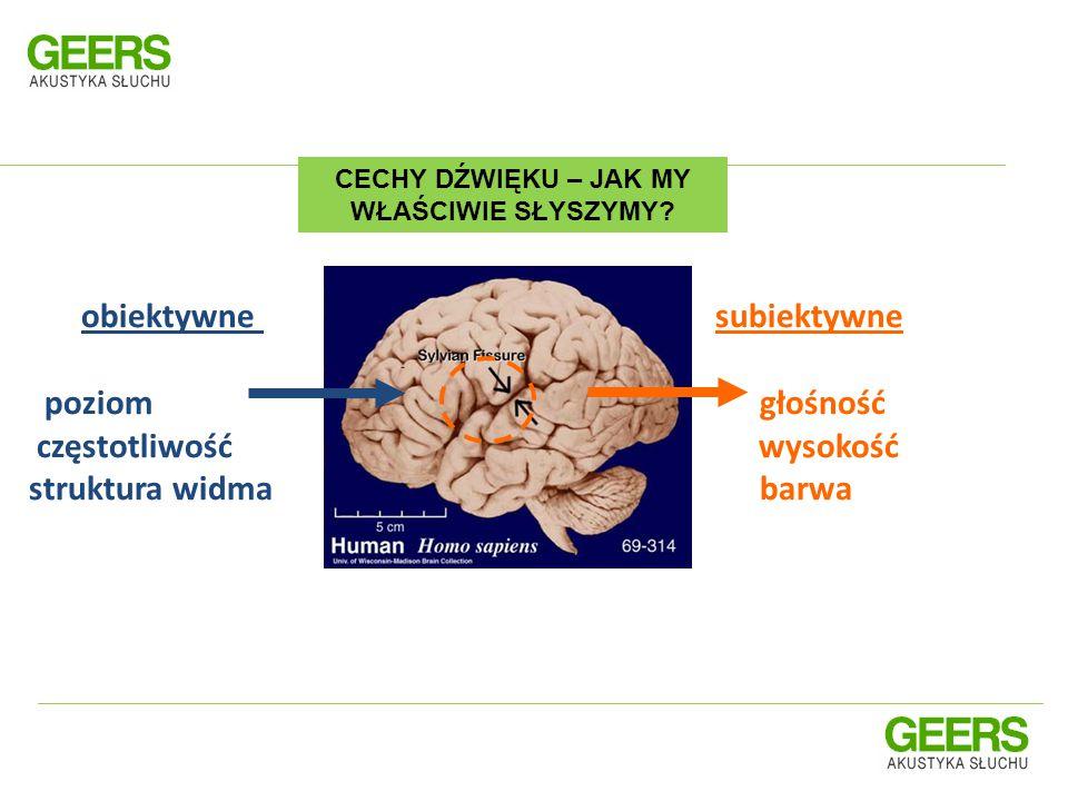 Kłopoty ze słuchem ma około 10% populacji Źle słyszy około 80% Polaków po 75 roku życia Na 1000 noworodków, jedno dziecko rodzi się z wadą słuchu JAK DUŻO Z NAS MA PROBLEMY ZE SŁYSZENIEM.