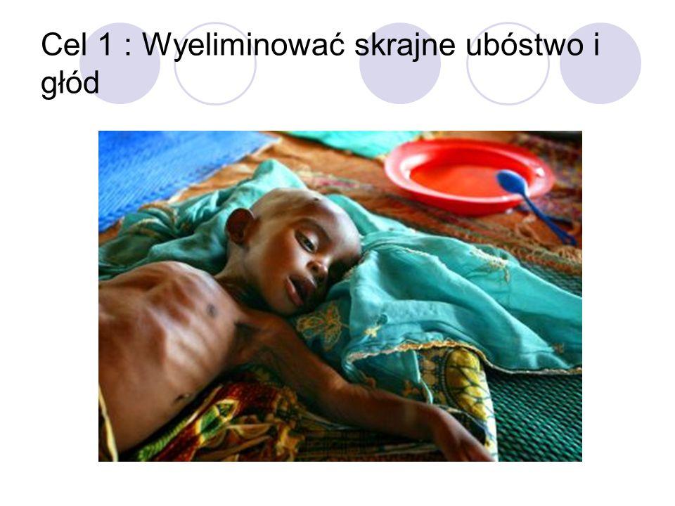 Cel 1 : Wyeliminować skrajne ubóstwo i głód