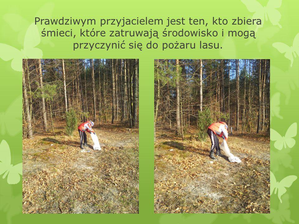 Prawdziwym przyjacielem jest ten, kto zbiera śmieci, które zatruwają środowisko i mogą przyczynić się do pożaru lasu.