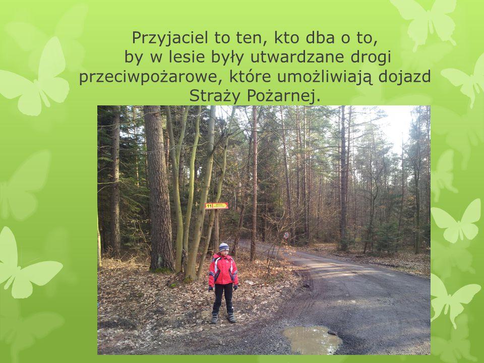 Przyjaciel to ten, kto dba o to, by w lesie były utwardzane drogi przeciwpożarowe, które umożliwiają dojazd Straży Pożarnej.