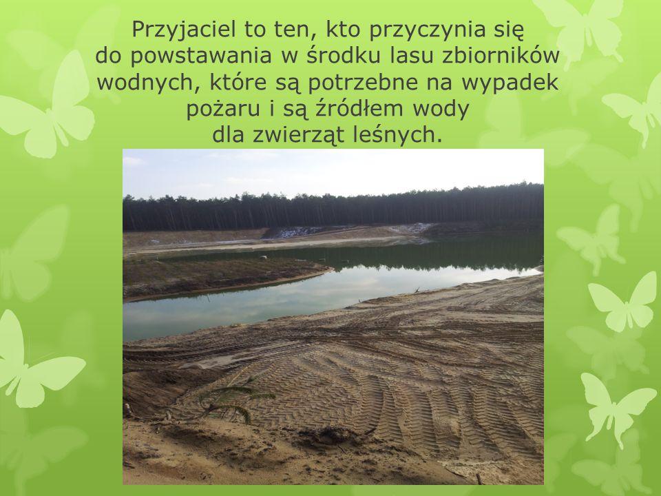 Przyjaciel to ten, kto przyczynia się do powstawania w środku lasu zbiorników wodnych, które są potrzebne na wypadek pożaru i są źródłem wody dla zwie