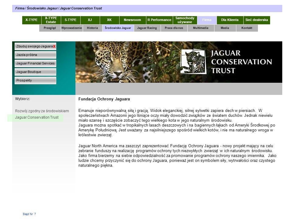 Slajd Nr 7 Fundacja Ochrony Jaguara Emanuje nieporównywalną siłą i gracją.
