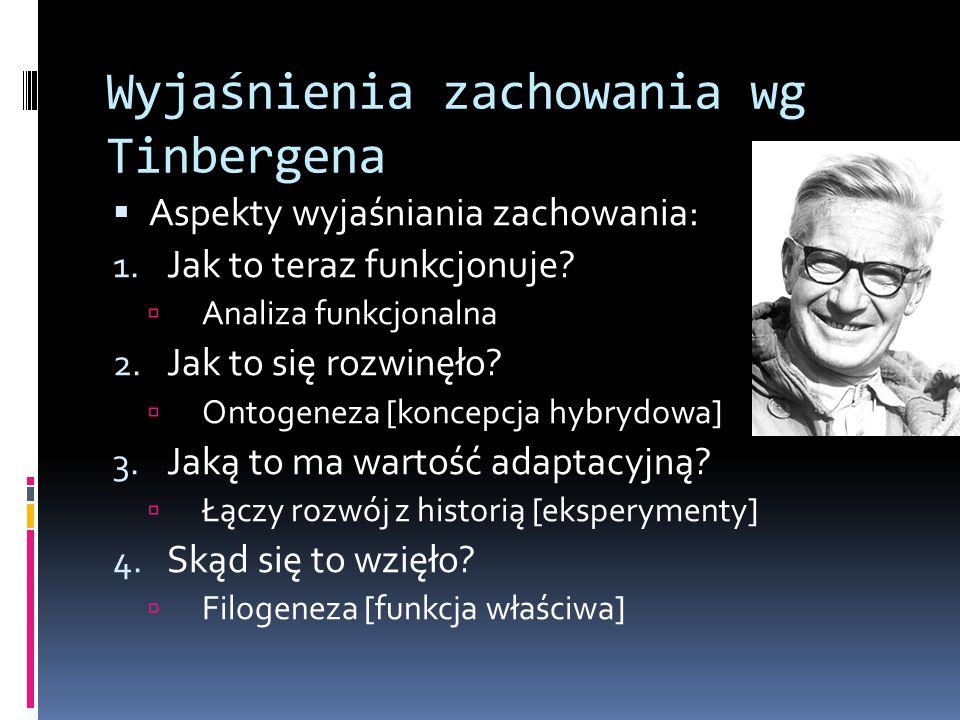 Wyjaśnienia zachowania wg Tinbergena  Aspekty wyjaśniania zachowania: 1. Jak to teraz funkcjonuje?  Analiza funkcjonalna 2. Jak to się rozwinęło? 