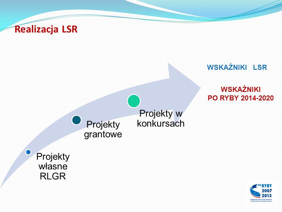 Realizacja LSR Projekty własne RLGR Projekty grantowe Projekty w konkursach WSKAŹNIKI LSR WSKAŹNIKI PO RYBY 2014-2020
