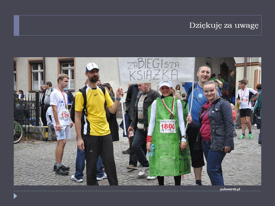 Dziękuję za uwagę pulowerek.pl