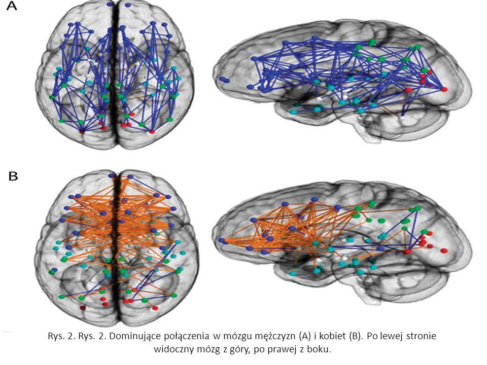 Rys. 2. Rys. 2. Dominujące połączenia w mózgu mężczyzn (A) i kobiet (B). Po lewej stronie widoczny mózg z góry, po prawej z boku.