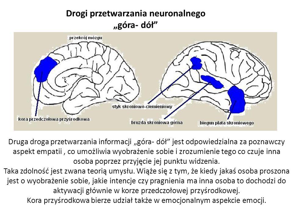 Odkrycie neuronów lustrzanych może stać się dla psychologii tym czym było odkrycie dna dla genetyki.