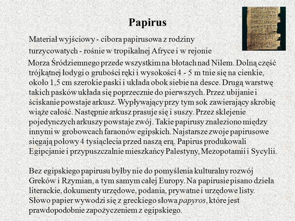 Papirus Materiał wyjściowy - cibora papirusowa z rodziny turzycowatych - rośnie w tropikalnej Afryce i w rejonie Morza Śródziemnego przede wszystkim na błotach nad Nilem.