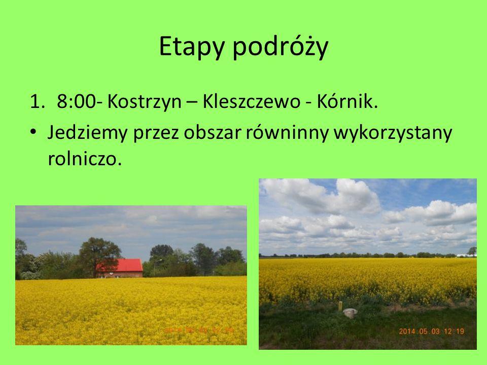 Etapy podróży 1.8:00- Kostrzyn – Kleszczewo - Kórnik. Jedziemy przez obszar równinny wykorzystany rolniczo.