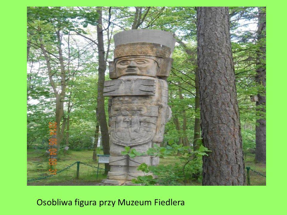 Osobliwa figura przy Muzeum Fiedlera