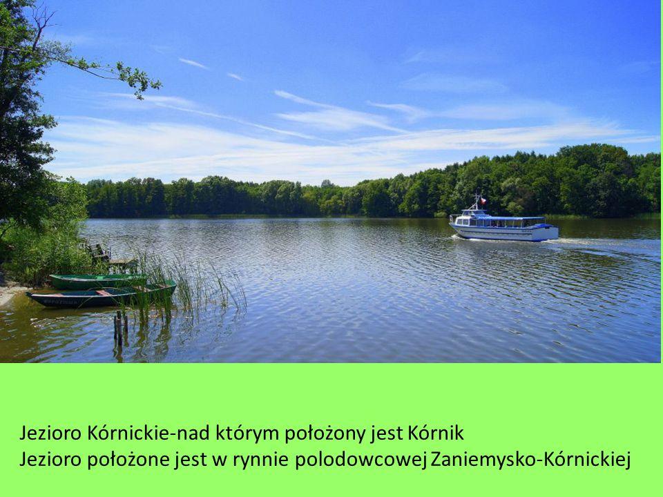 Jezioro Kórnickie-nad którym położony jest Kórnik Jezioro położone jest w rynnie polodowcowej Zaniemysko-Kórnickiej