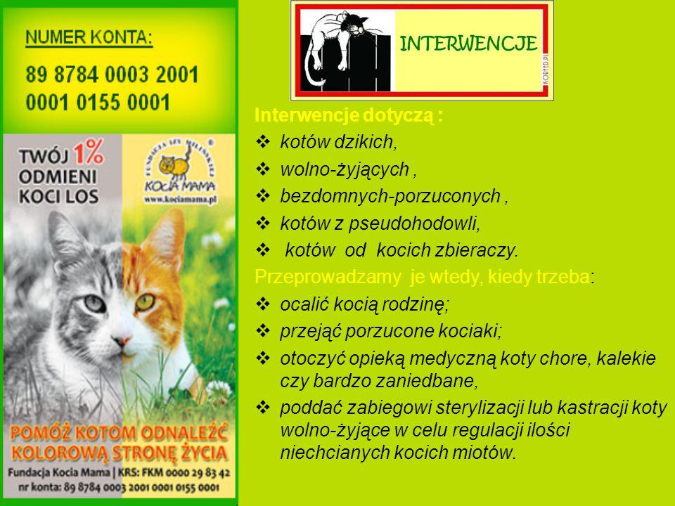 Interwencje dotyczą :  kotów dzikich,  wolno-żyjących,  bezdomnych-porzuconych,  kotów z pseudohodowli,  kotów od kocich zbieraczy.