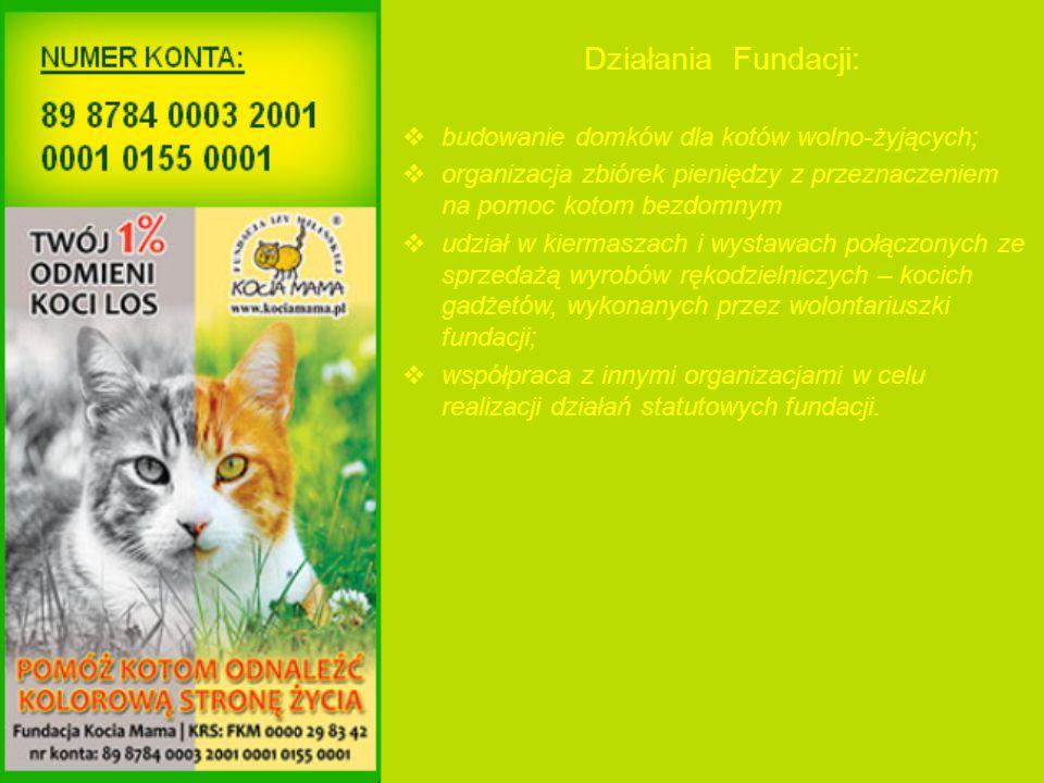 Działania Fundacji:  budowanie domków dla kotów wolno-żyjących;  organizacja zbiórek pieniędzy z przeznaczeniem na pomoc kotom bezdomnym  udział w kiermaszach i wystawach połączonych ze sprzedażą wyrobów rękodzielniczych – kocich gadżetów, wykonanych przez wolontariuszki fundacji;  współpraca z innymi organizacjami w celu realizacji działań statutowych fundacji.