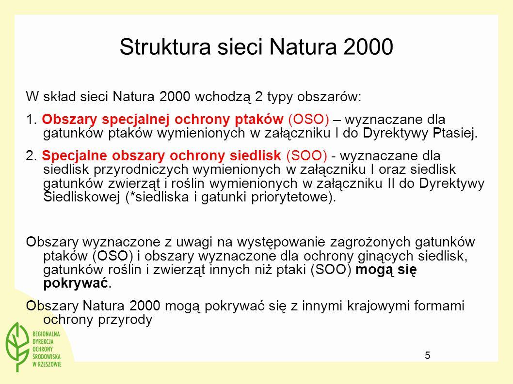 Artykuł 2 DS 2.
