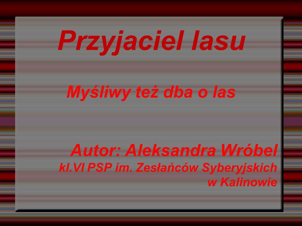 Przyjaciel lasu Myśliwy też dba o las Autor: Aleksandra Wróbel kl.VI PSP im.