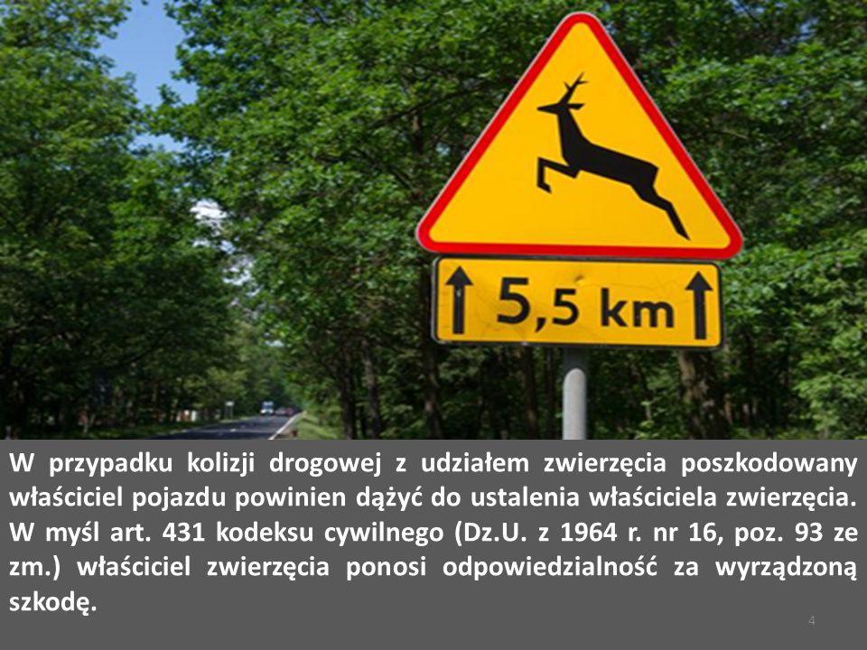 W przypadku kolizji drogowej z udziałem zwierzęcia poszkodowany właściciel pojazdu powinien dążyć do ustalenia właściciela zwierzęcia.