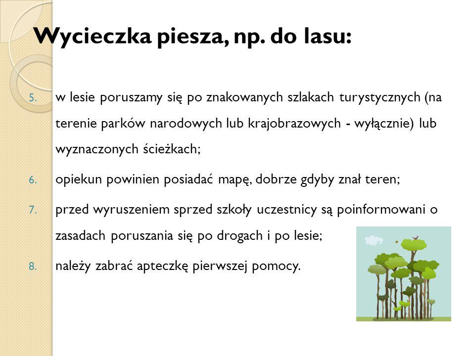 Wycieczka piesza, np.do lasu: 5.