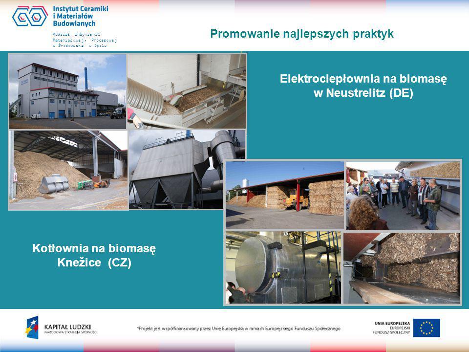 Oddział Inżynierii Materiałowej, Procesowej i Środowiska w Opolu Promowanie najlepszych praktyk Elektrociepłownia w Lienz (A)