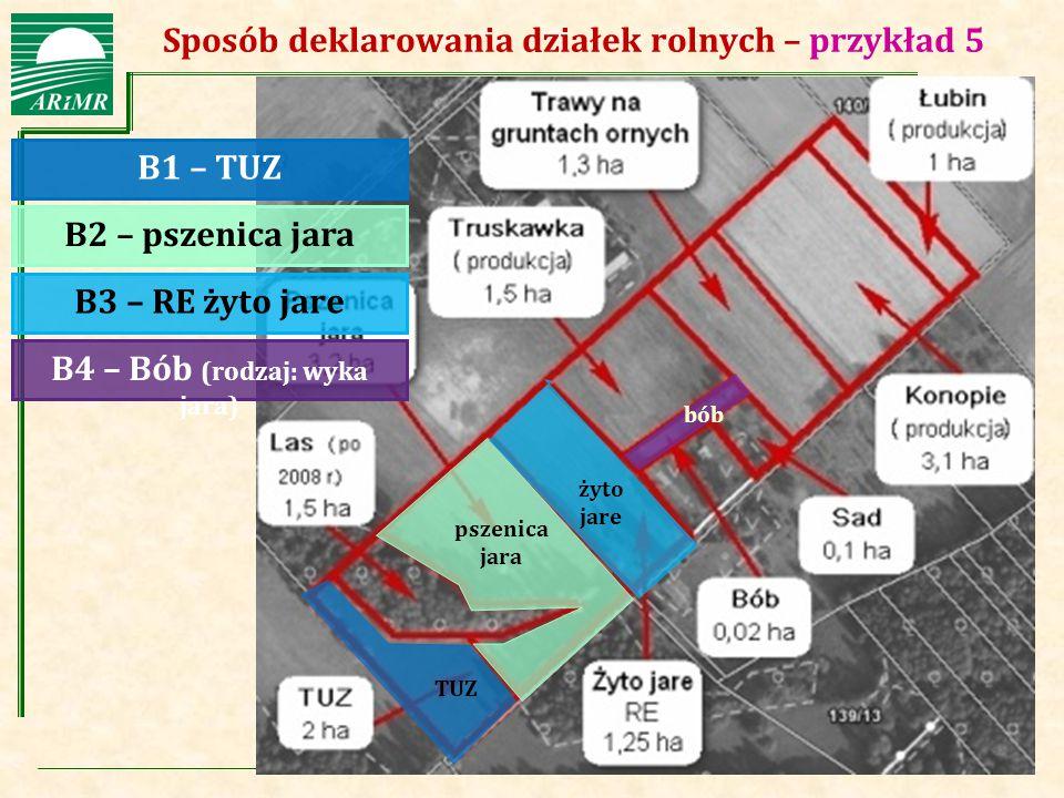 Agencja Restrukturyzacji i Modernizacji Rolnictwa Sposób deklarowania działek rolnych – przykład 5 B1 – TUZ B3 – RE żyto jare B2 – pszenica jara B4 –
