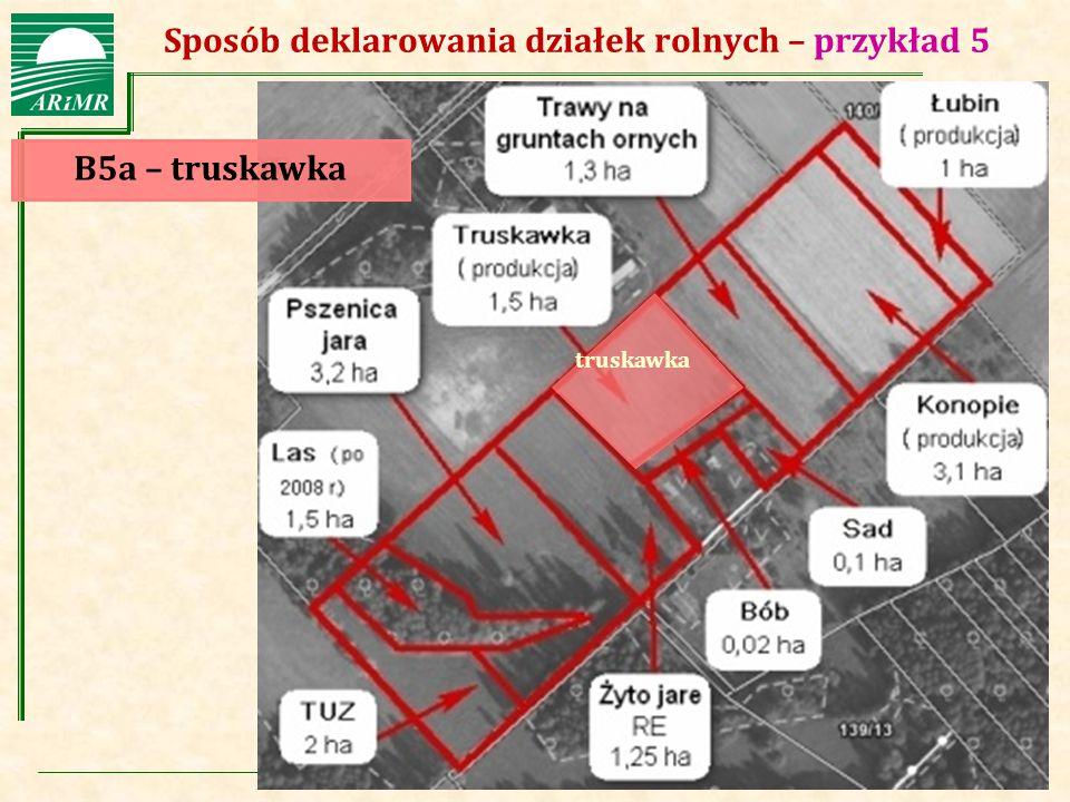 Agencja Restrukturyzacji i Modernizacji Rolnictwa Sposób deklarowania działek rolnych – przykład 5 B5a – truskawka truskawka