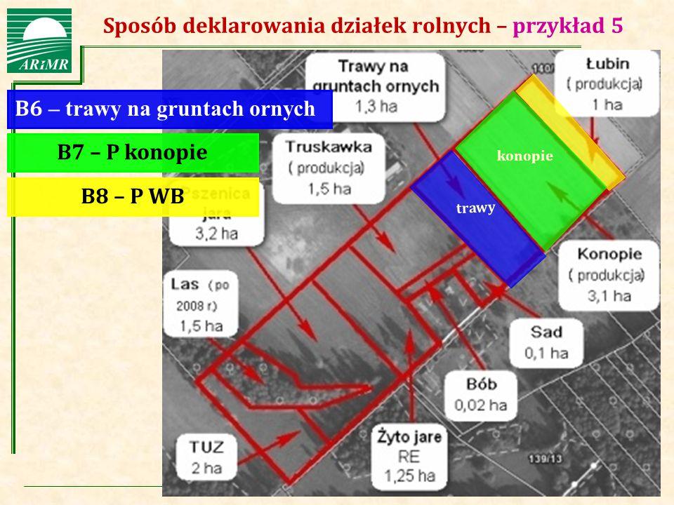 Agencja Restrukturyzacji i Modernizacji Rolnictwa Sposób deklarowania działek rolnych – przykład 5 B6 – trawy na gruntach ornych B7 – P konopie B8 – P